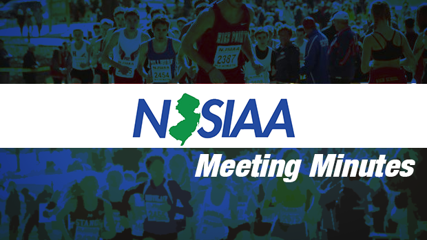 njsiaa meet of champions 2015 results ironman