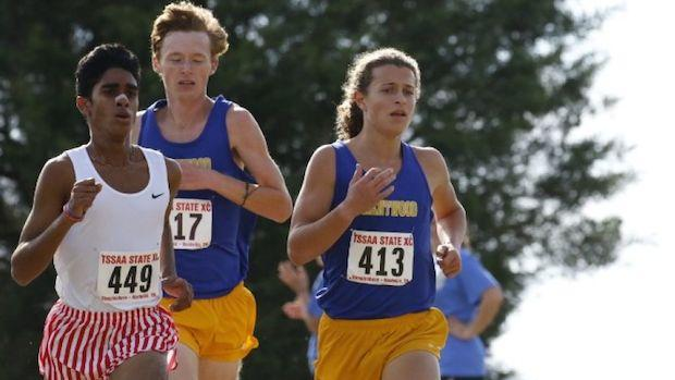 tn cross country state meet results