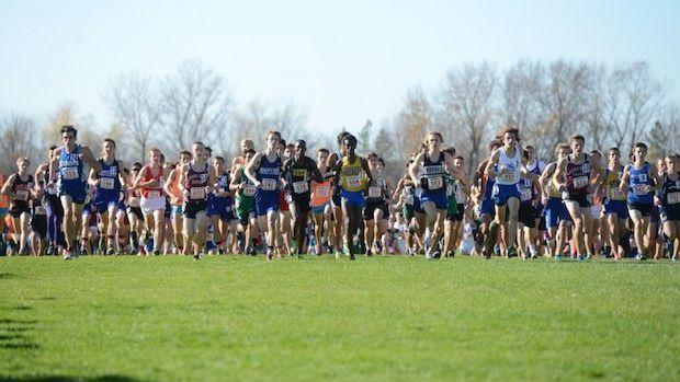 st olaf cross country state meet indiana