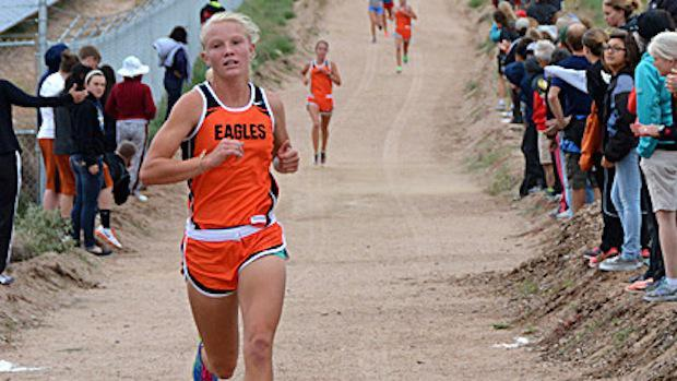 new mexico high school cross country state meet