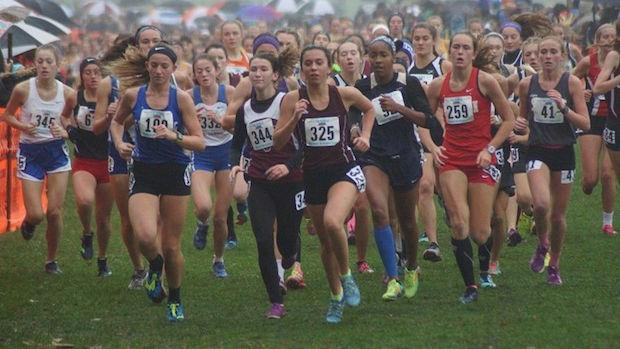 illinois lutheran state cross country meet results