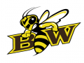 Baldwin-Wallace Mid-February Meet