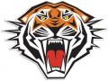 Tiger Classic