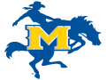 McNeese High School Indoor II