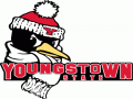 Youngstown State Invitational