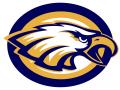 cfa Academy Eagles Challenge
