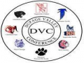Dupage Valley Conference