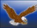 North Clayton Eagles Early Bird Invitational