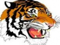 Crystal Springs Tiger Invitational