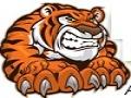 Tiger Track Classic