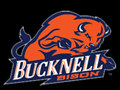 Bucknell Team Challenge