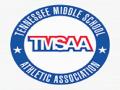 TMSAA Upper East TN Large School Sectionals
