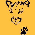 Arizona Puma Glendale, AZ, USA