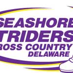 Seashore Striders Cape Henlopen, DE, USA